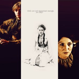 Catelyn-Sansa-Arya-Stark-house-stark-31818076-500-500